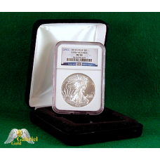2010 P 25th Anniversary Silver Eagle MS-70 ER